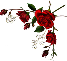 roses_right